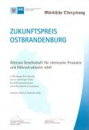 Urkunde Zukunftspreis 2004_klein